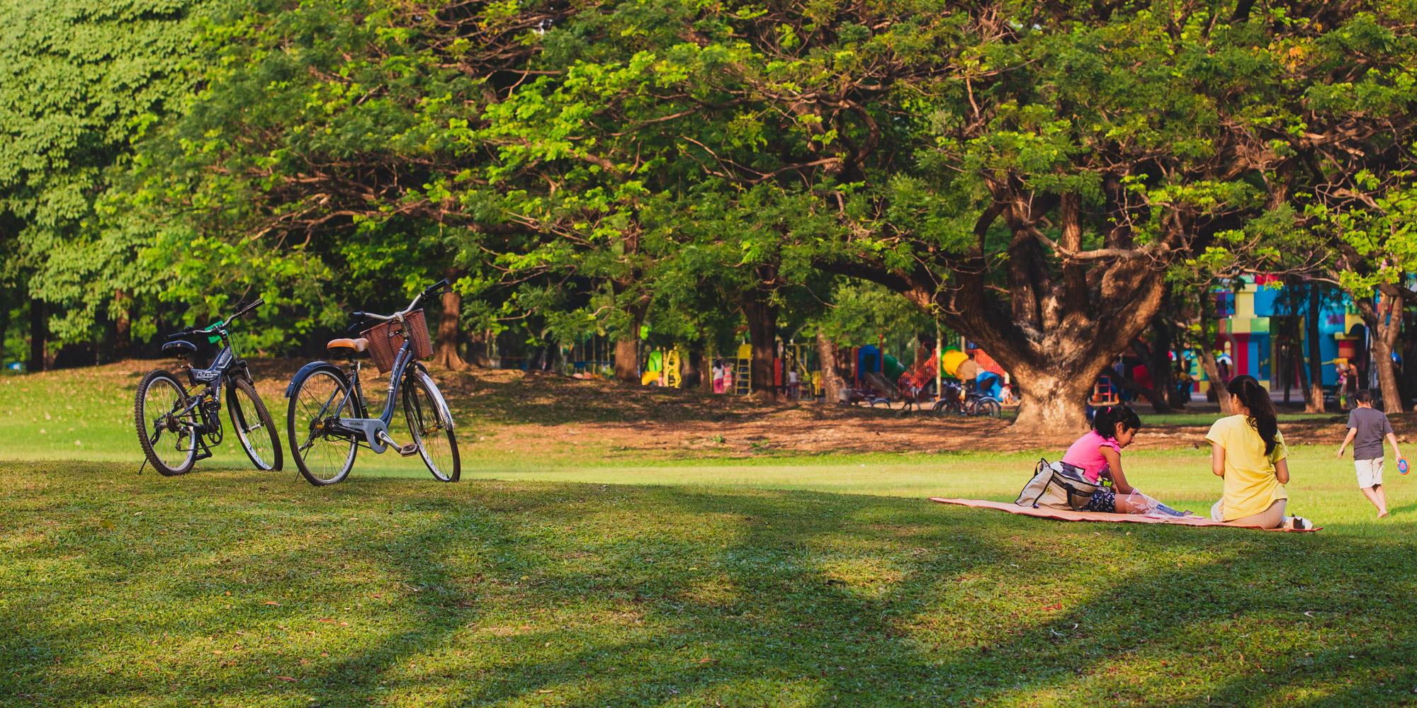 สวนรถไฟ   Rot Fai Park